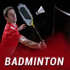 hyve badminton