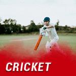 hyve cricket